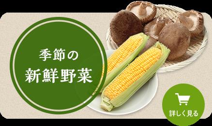 季節の新鮮野菜