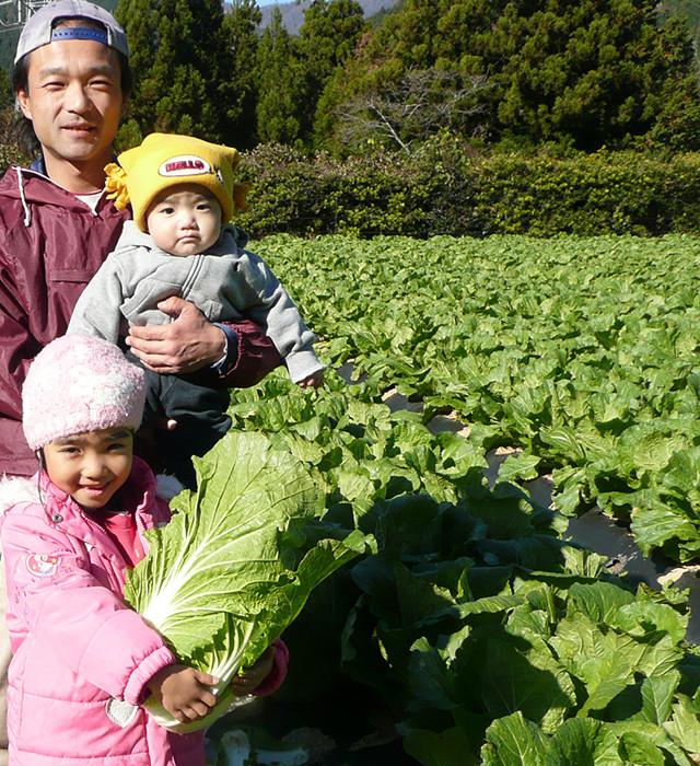 川根朝霧園の農業体験